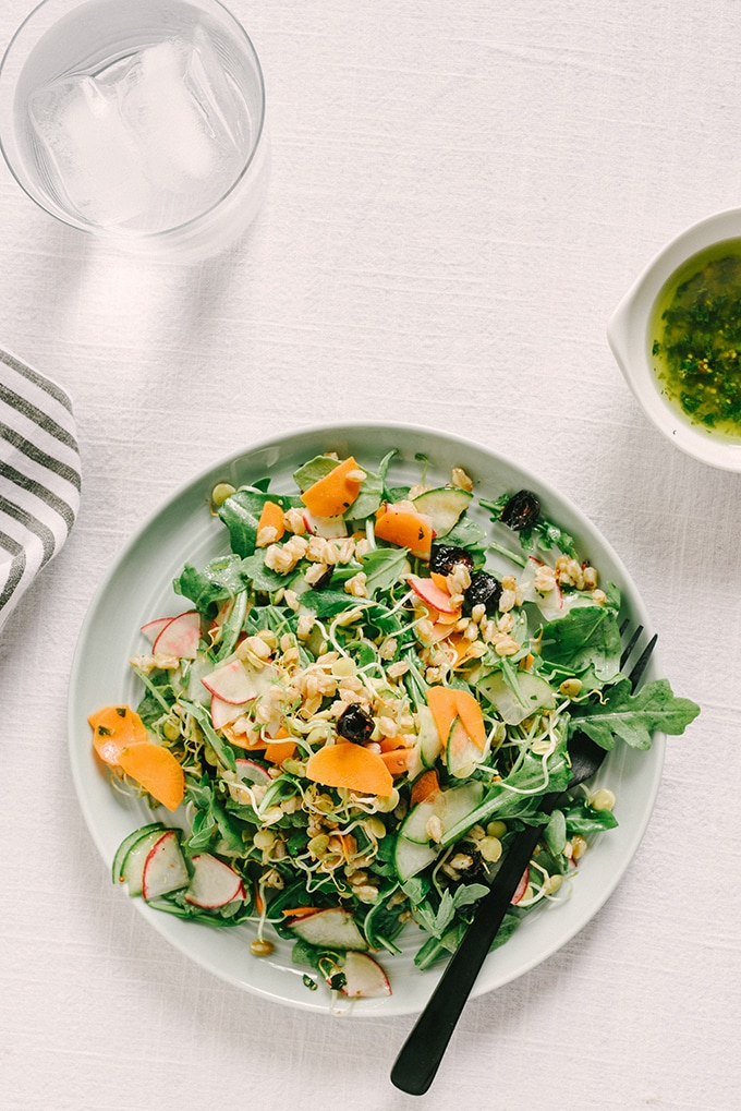 A plate of vegan lentil salad, made with thinly sliced radish, cucumber, and carrot, tossed with sprouted lentils, farro, and arugula, on a white tablecloth with a black fork.