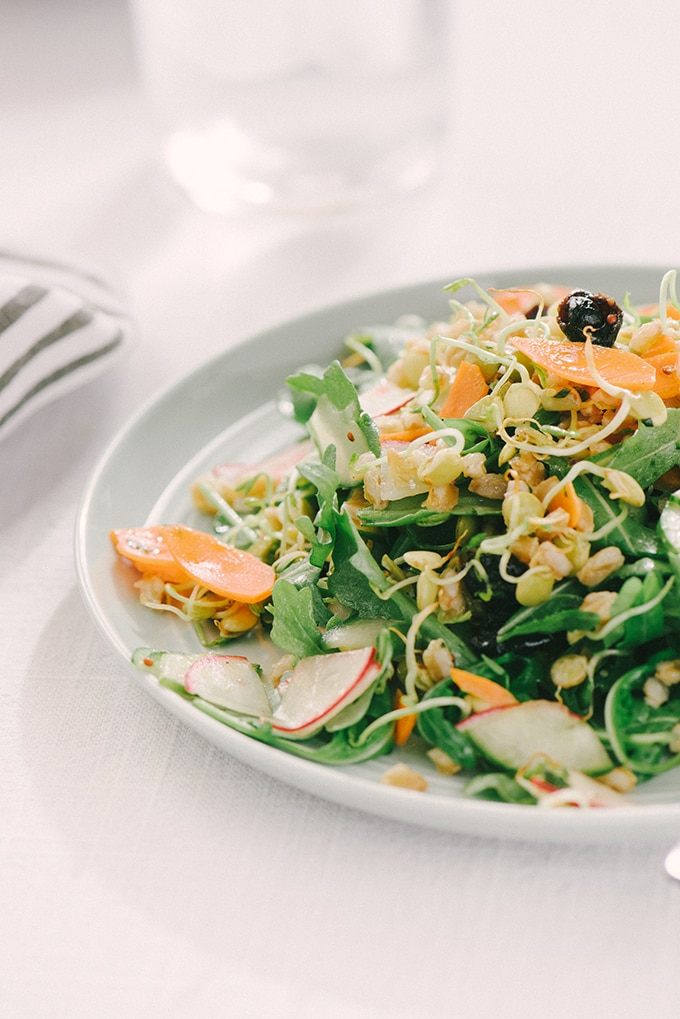 A plate of sprouted lentil salad with carrots, radishes, cucumber, farro, dried cherries, arugula and an herb vinaigrette on a white tablecloth.