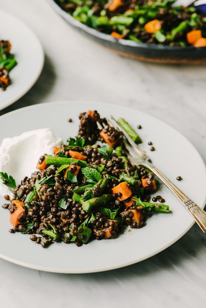 Side view, black lentil salad with roasted vegetables and greek yogurt.