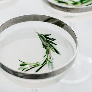 Three coupe glasses with silver rims filled with a straight up rosemary vodka gimlet garnished with rosemary sprigs.