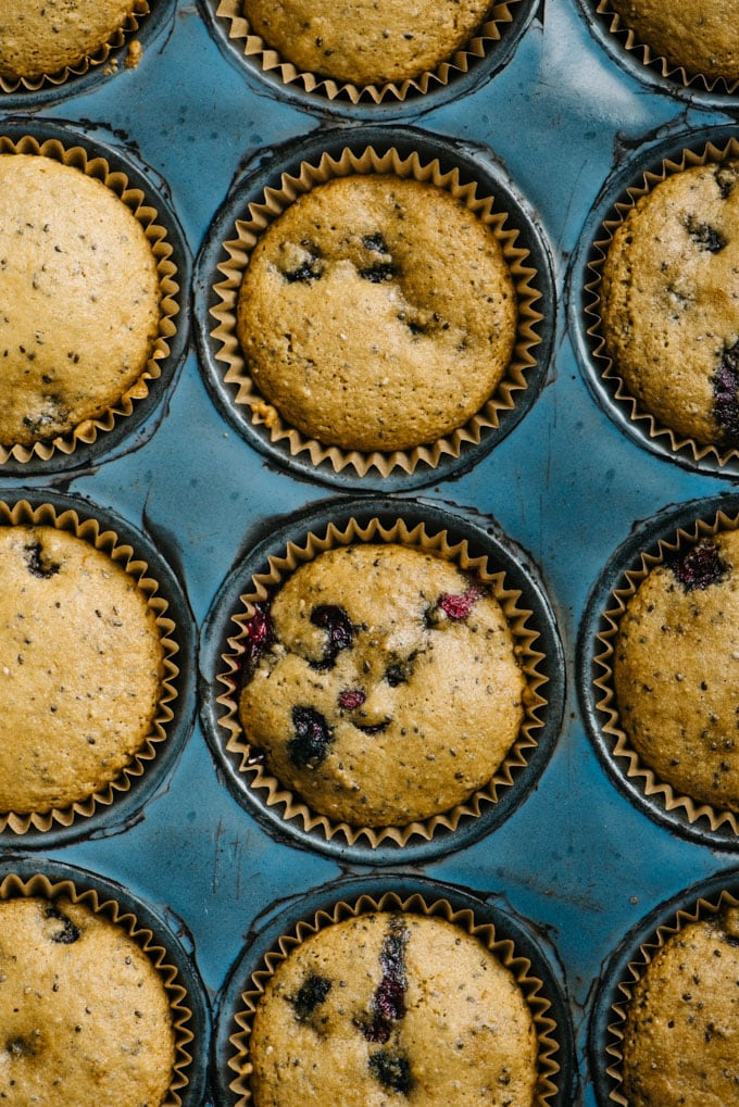 Baked paleo blueberry muffins in a muffin tray.