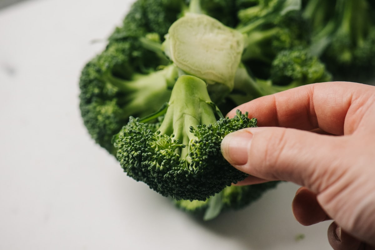 A woman's hand holding a broccoli floret trimmed away from the stalk.