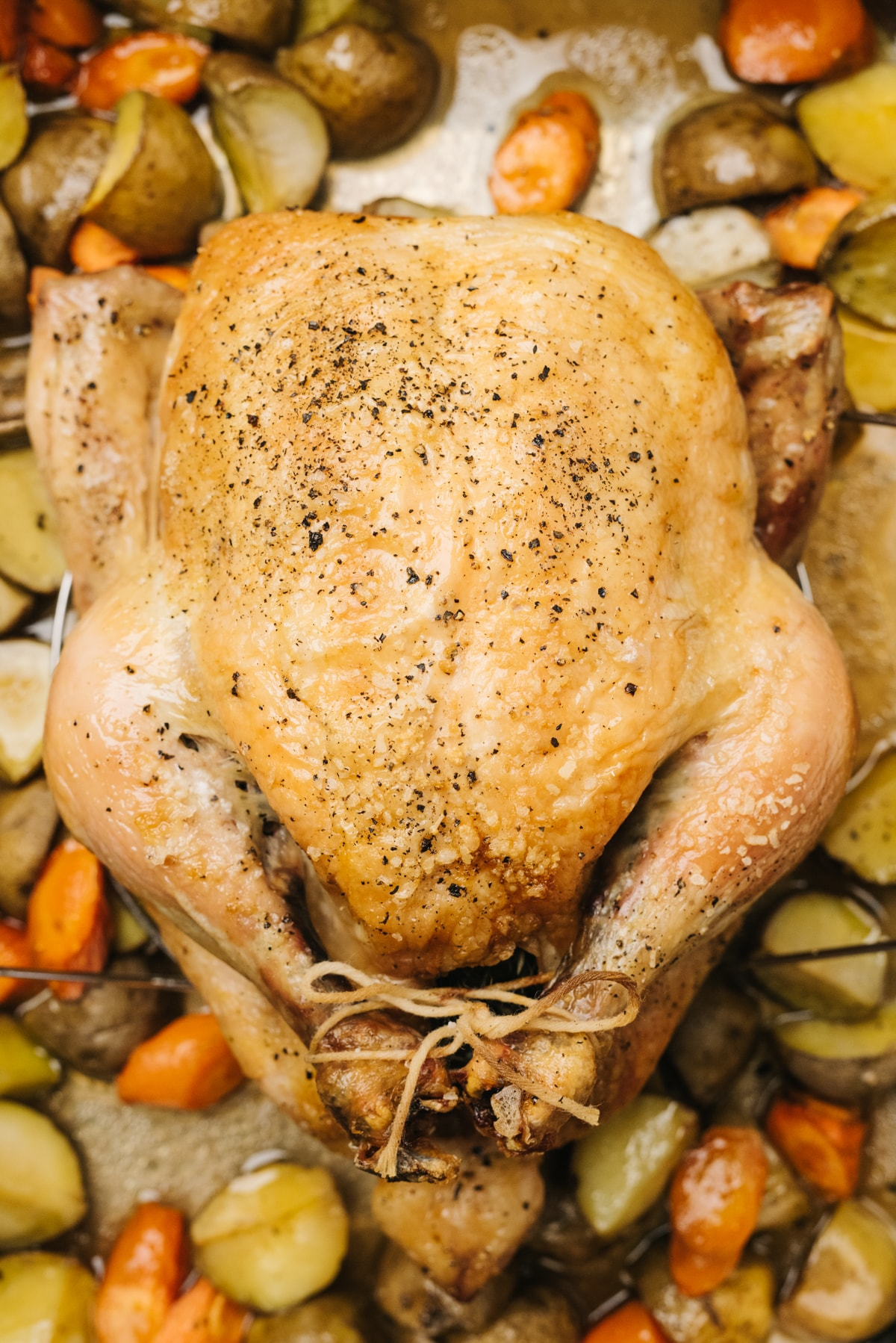 A whole roasted chicken in a roasting pan surrounded by carrots and potatoes.