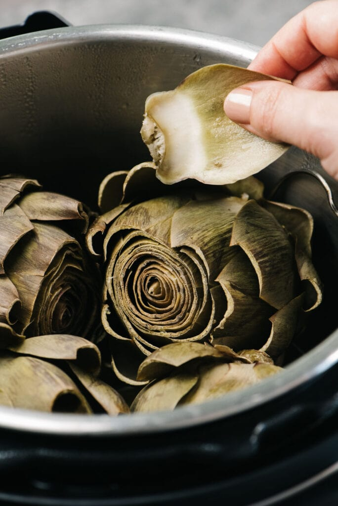 Pulling a leaf from a whole artichoke in an instant pot to test for doneness.
