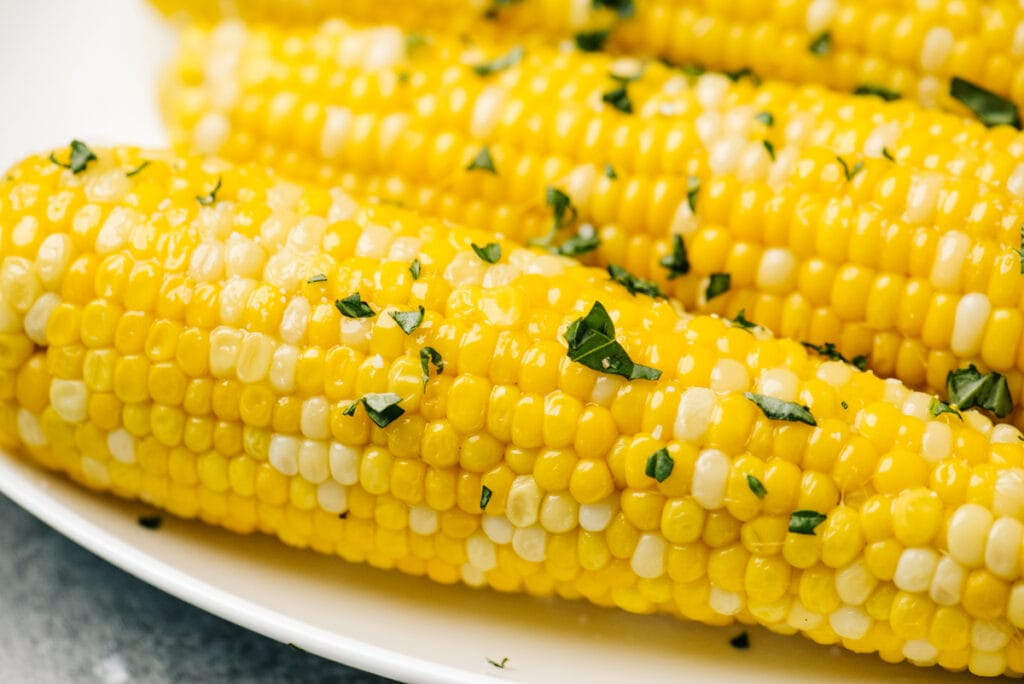 Side view, several ears of boiled corn on a white plate.
