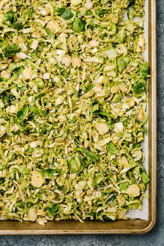 Shaved brussels sprouts tossed with oil and seasonings on a parchment lined baking sheet.